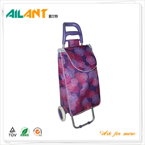 Shopping trolley,ELD-B301-3-Normal Style Shopping Trolley (108)