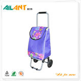 Shopping trolley,ELD-X101-3 -Normal Style Shopping Trolley (63)