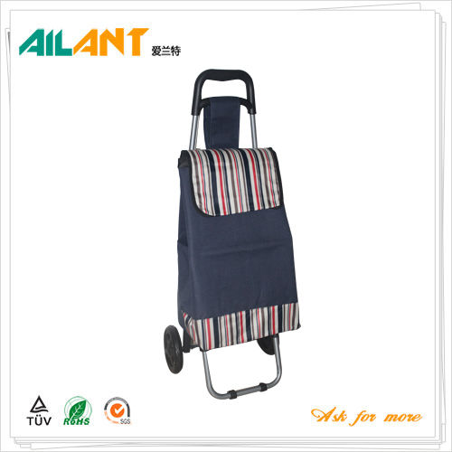 Shopping trolley,ELD-C301-Normal Style Shopping Trolley (111)