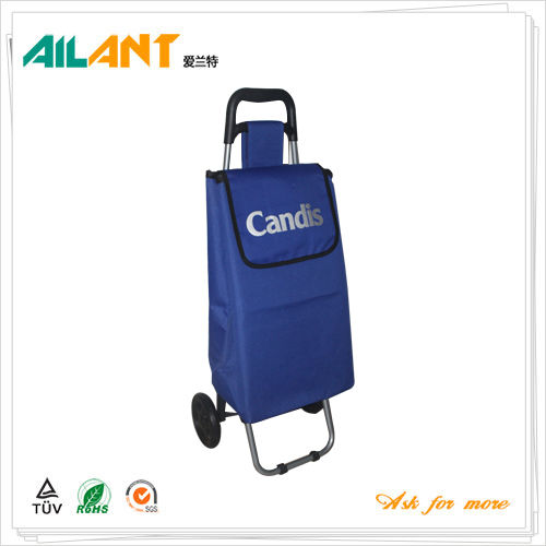 Shopping trolley,ELD-G101-Normal Style Shopping Trolley (97)