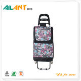 Shopping trolley,ELD-B301-17 -Normal Style Shopping Trolley (107)