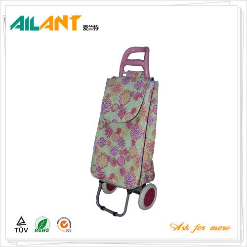 Shopping trolley,ELD-B301-Normal Style Shopping Trolley (125)