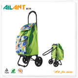 Shopping trolley,ELD-X102 -With Foldable (7)