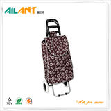 Shopping trolley,ELD-B301-5 -Normal Style Shopping Trolley (22)