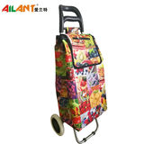 Normal style shopping trolley-C123