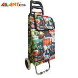 Normal style shopping trolley-C122