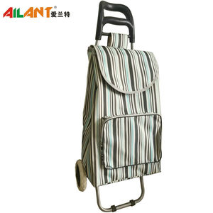 Normal style shopping trolley-C120