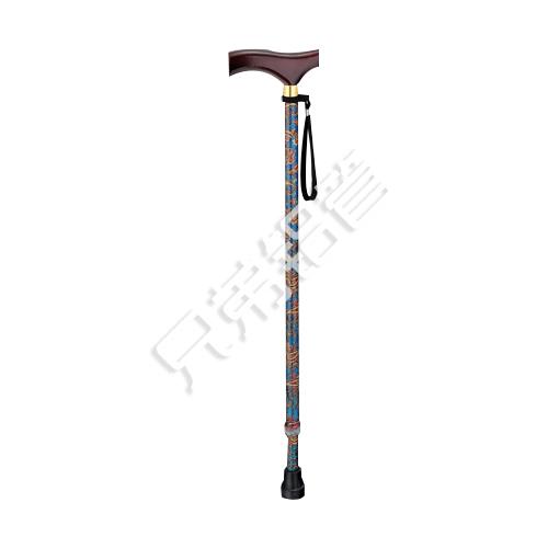 Medical Rehabilitation Equipment-AA8_1220