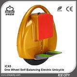 One Wheel Self Balancing Electric Unicycle -ICX5
