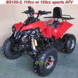 125cc Adult Sports ATV -BS125-3