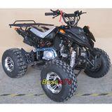 110cc or 125cc ATV  -BS110-5 big tyre