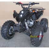 110cc and 125cc ATV  -BS110-5(21 and 20)