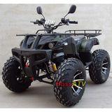 4000W Electric ATV  -BSE4000-2(4000W)