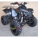 110cc and 125cc ATV -BS125-3 Fibre