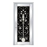 Stainless steel door -FX-5003
