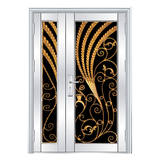 Stainless steel door -FX-5019
