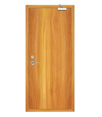 Fire Rated Paintless door-JYJ-MQ808