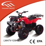 ATV QUAD -LMATV-125HM