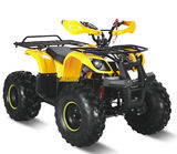 750W electric atv quad with brushless motor -LME-1000G