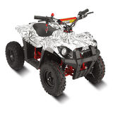 Electric ATV/MOTO-LMEATV-500K