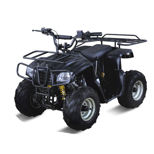 ATV QUAD-LMATV-110HM