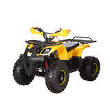 Electric ATV -LME-1000G