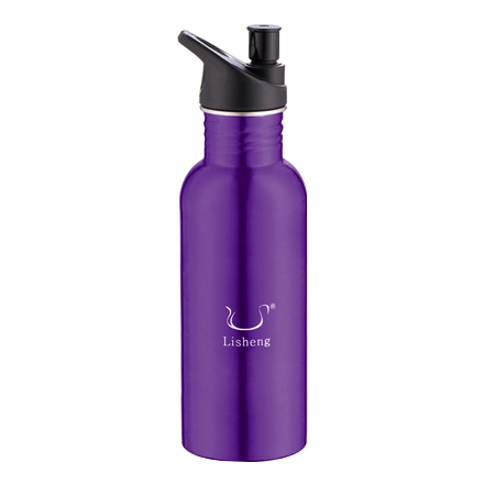 STAINLESS STEEL SPORTS BOTTLE-LS-S204