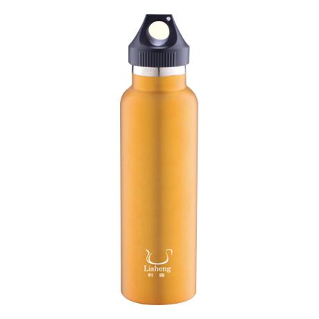 VACUUM WATER BOTTLE-LS-T203