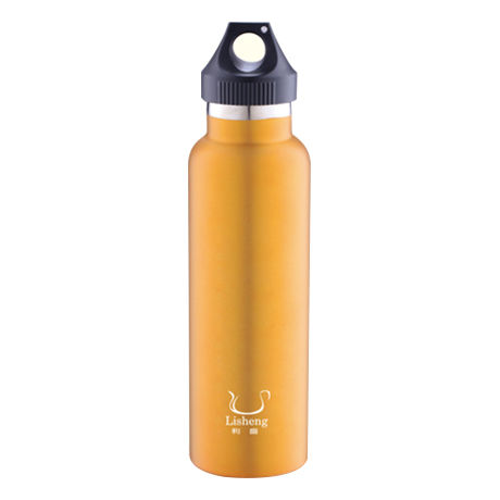 VACUUM WATER BOTTLE-LS-T203