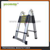 Telescopic Ladder -AT0216A