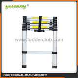 Telescopic Ladder -AT0106A