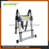 Telescopic Ladder -AT0210A
