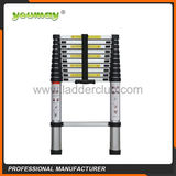 Telescopic Ladder -AT0110A