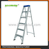Double-sided ladders -AD0906A2