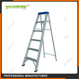 Double-sided ladders -AD0906A