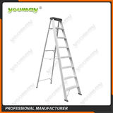 Double-sided ladder -AD0908A