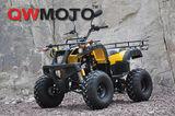 QWATV-08L  150CC -QWATV-08L WARRIOR150