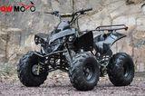 QWATV-02E RAIDER 125 -