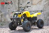 QWATV-08D WARRIOR 250 -