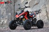 QWATV-08K SPORTS 150 AUTO -