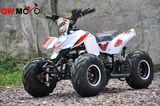 2 Stroke ATV -
