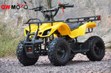 49cc Mini Hunter with Pull Start & Electric Start -QWMATV-01E