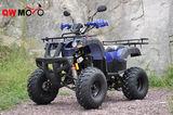 QWATV-08D WARRIOR 250 -QWATV-08D