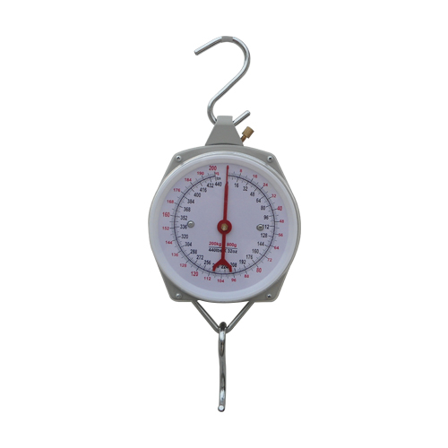 Hook scale