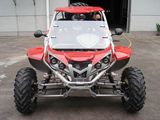 500DZ Go kart-RLG1-500DZ with full optional parts