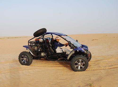 RL1100 in desert-RL1100 in desert