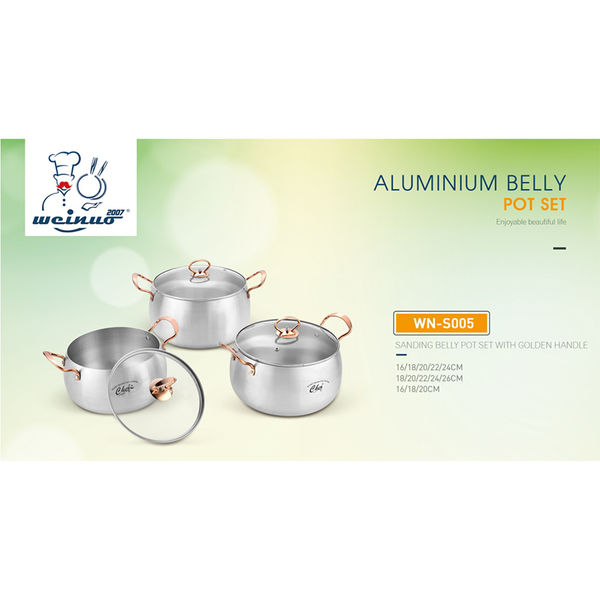 SANDING BELLY POT SET WITH GOLDEN HANDLE-WN-S005