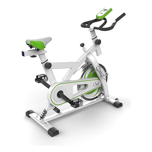 EXERCISE BIKE-PS-EB015