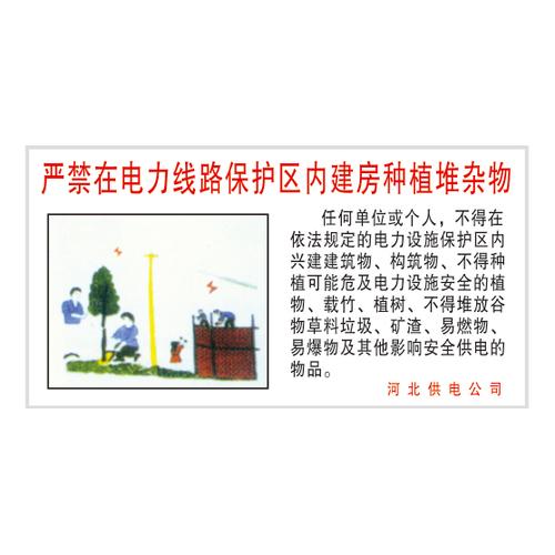 Electricity publicity-12-5