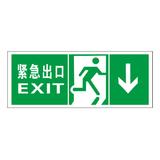 Luminous emergency evacuation signs-18-8